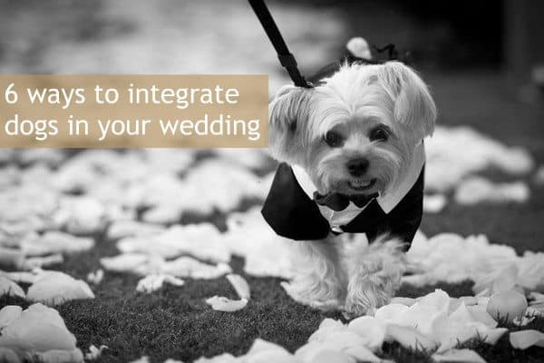 6 ways to integrate dogs in your wedding