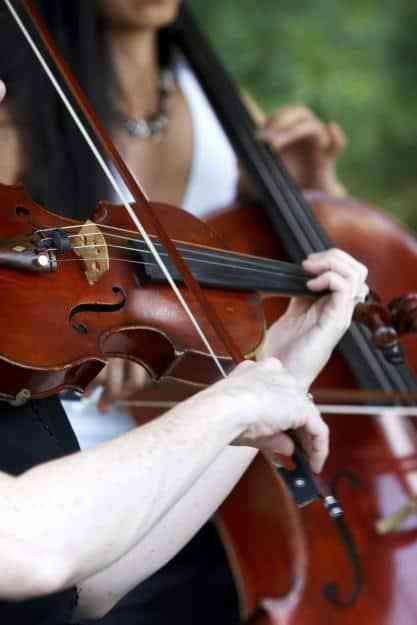 Violinist at wedding ceremony